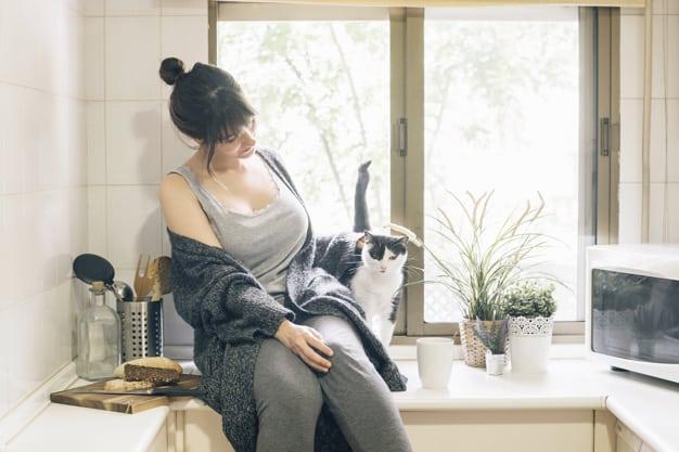 יש חתולים אין נחשים – היש אמת בדבר